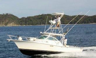 Enjoy Fishing in Garza, Costa Rica on 31' Sport Fisherman