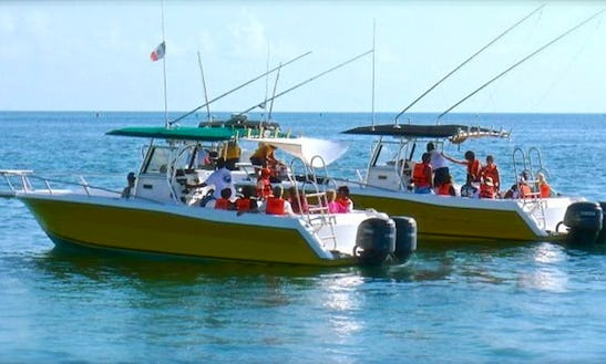 31' Whale Shark Boat Tour In Isla Mujeres