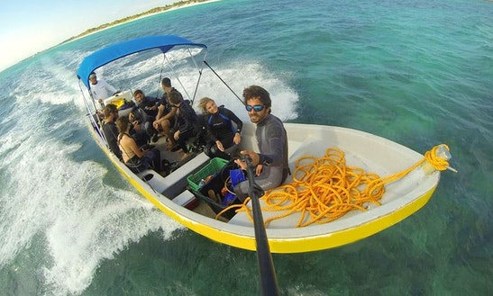 Discover Scuba Diving Tour For Non-certified Divers In Tulum, Mexico