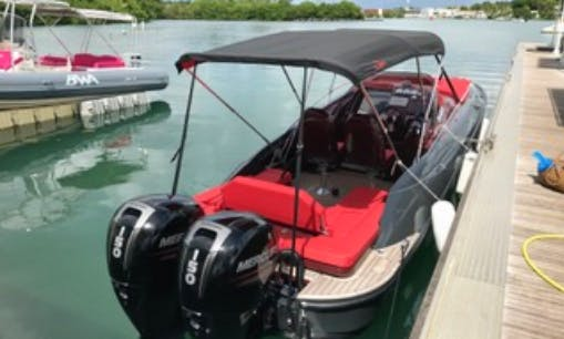 """25ft """"Sweet Love Libra"""" Rigid Hull Boat Rental In Pointe-à-Pitre, Guadeloupe"""