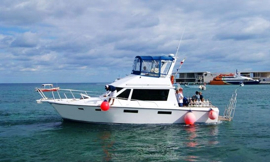 Head Boat Diving Charter In Cozumel, Mexico