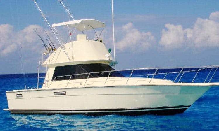 Go Fishing in San Miguel, Mexico on a 35' Sport Fisherman Yacht