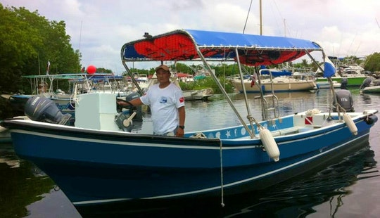 Diving Charter In Cozumel, Mexico