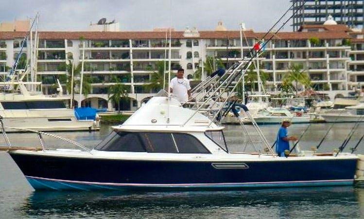 31' Bertram Fishing Charter in Puerto Vallarta