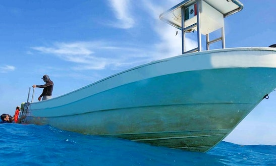 Boat Diving Tours  Courses In Playa Del Carmen, Mexico