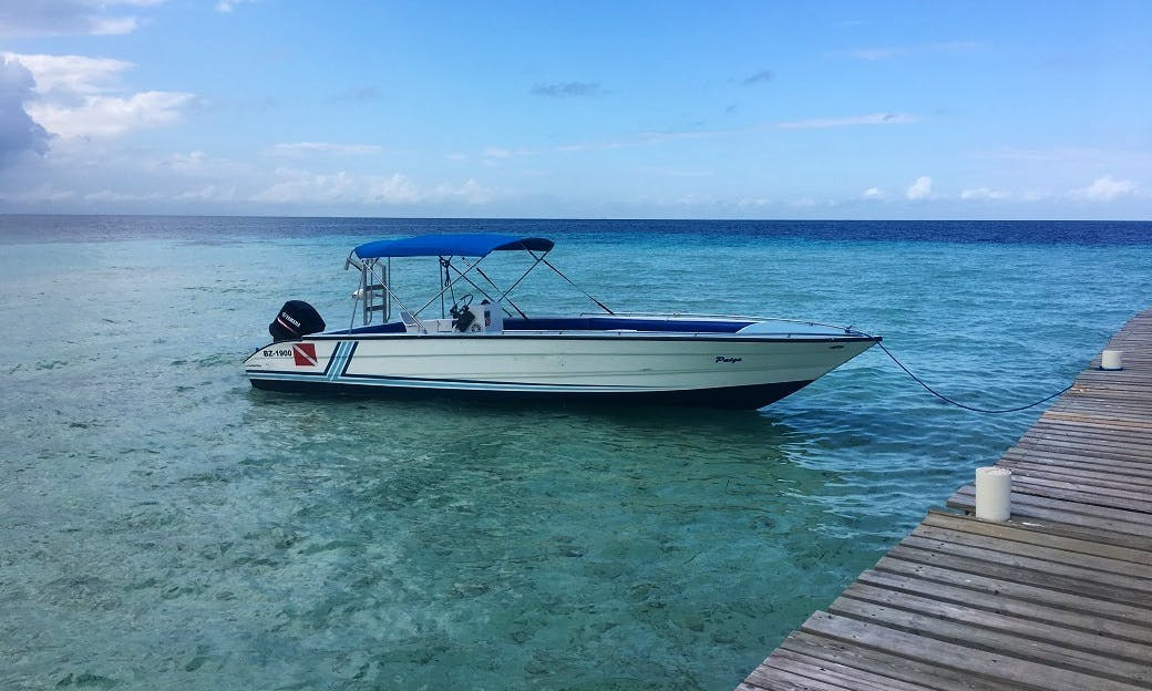 Rent a Center Console for up to 12 pax in Belize City, Belize