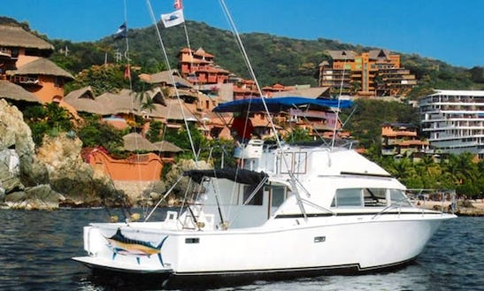 Fishing Charter In Zihuatanejo, Guerrero