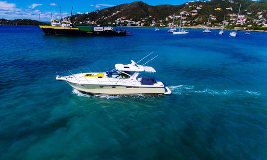 Charter 36' Tiara Motor Yacht In Parham Town, British Virgin Islands