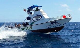 Snorkeling and Fishing Tours From Isabela Galapagos  Ecuador
