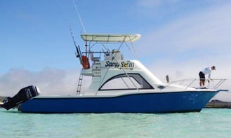 Fishing Excursion in Puerto Ayora, Ecuador for $1200 a day on a Sport Fisherman (Bait and Tackle included)