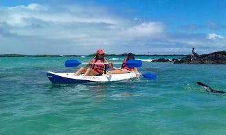 Rent a Kayak in Puerto Villamil Isabela Island Galapagos, Ecuador