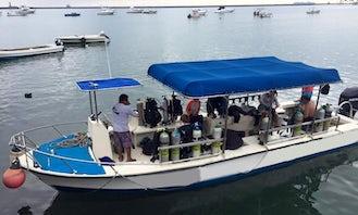 Scuba Diving On Veracruz Coral Reef System