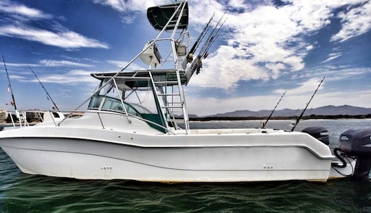 30' Sport Fisherman Charter In Nayarit, Mexico
