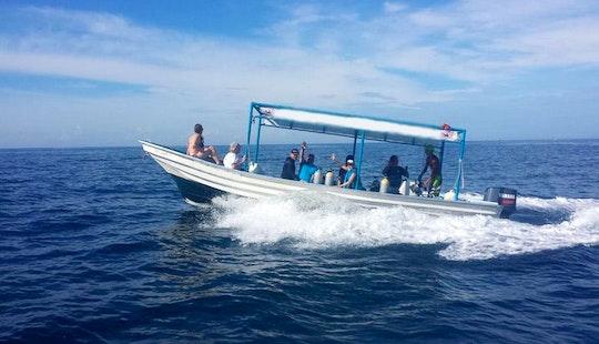 Dive Boat In Ixtapa