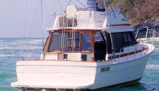 33' Bayliner Sportfishing Charter In Ixtapa