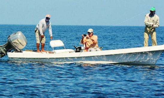 Guided Tarpon Fishing In Campeche