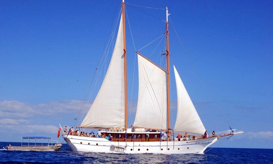 Boat Sailing Day Trips In Schooner Island