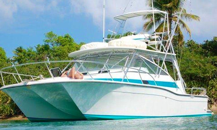38' Power Catamaran in Palmas del Mar Humacao, Puerto Rico