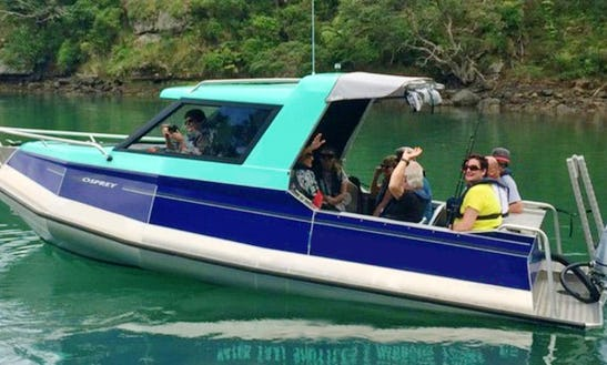 Charter A Water Taxi In Totara North, New Zealand
