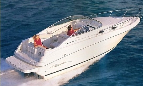 Charter 36' Monetery 262 Cuddy Cabin In Marbella, Spain
