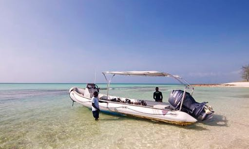 Charter 26' Samsuri Rigid Inflatable Boat in Paje, Tanzania - Great for Diving and Snorkeling