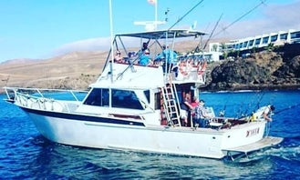 Fishing trip in Teguise, Spain on a Sport Fisherman