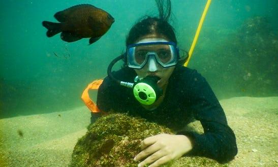 Enjoy Snorkeling In Malvan, India
