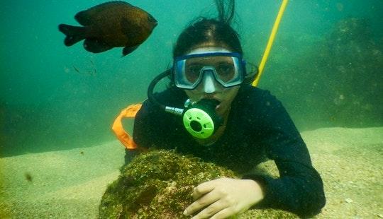 Snorkeling In Malvan, India