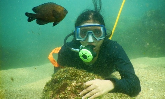 Enjoy Snorkeling In Malvan, India