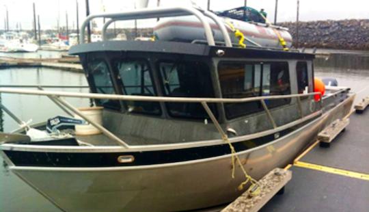28' Alumaweld Offshore Guide Boat In Soldotna, Alaska