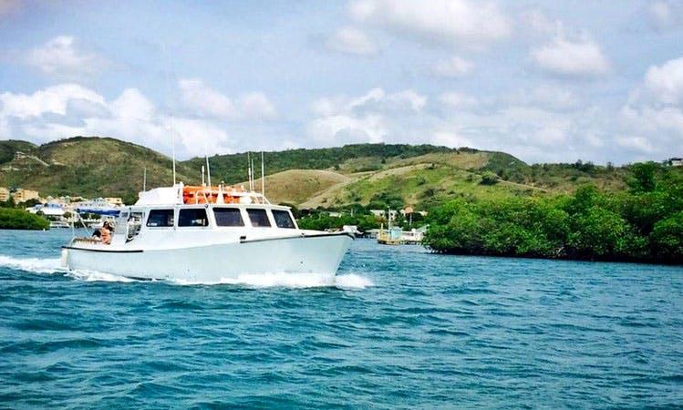 """Teaser"" Boat Diving & Snorkeling in Lajas, Puerto Rico"