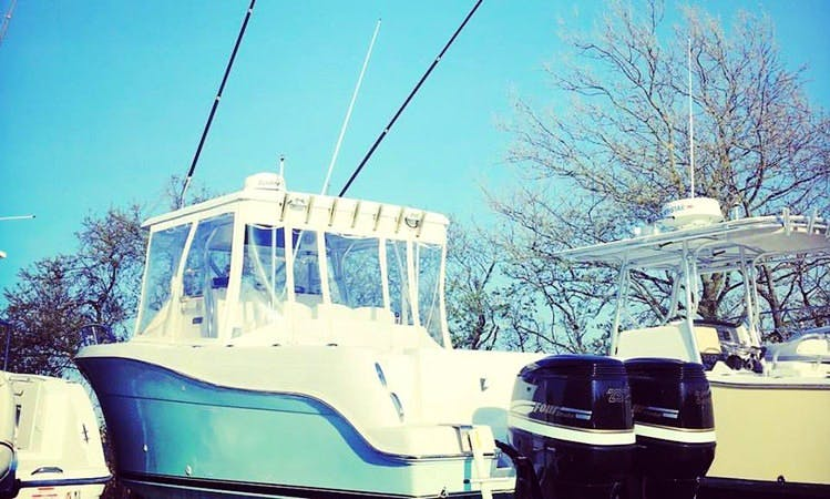 Rehoboth Beach Fishing Charter on 31ft Pro Sports Boat with Captain Kevin