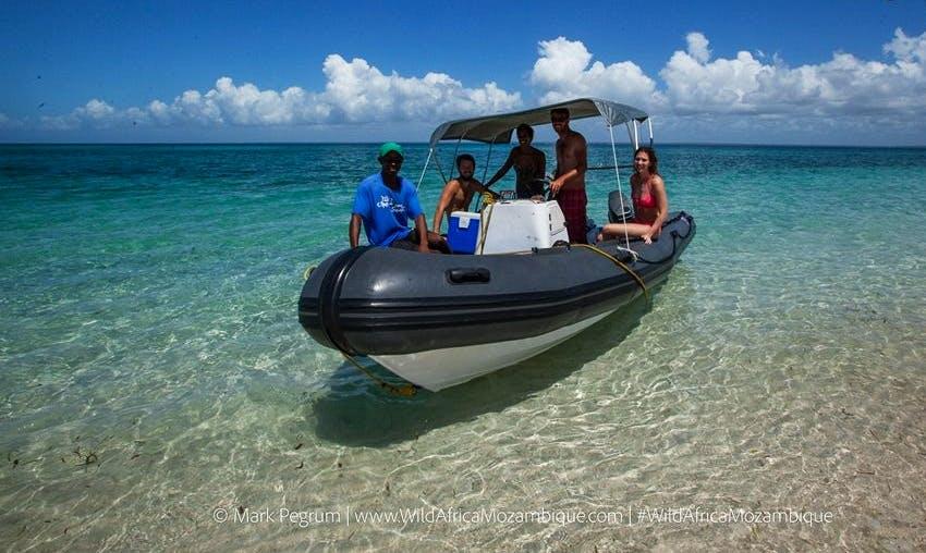 Charter a Rigid Inflatable Boat in Vilanculos, Mozambique