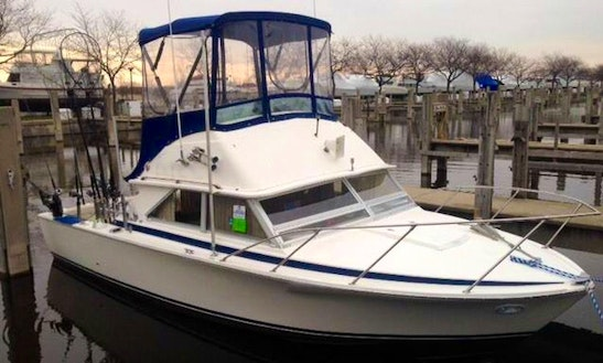 28' Sport Fisherman Charter In Spring Lake Township, Michigan