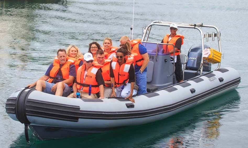 Charter 28' Gemini Rigid Inflatable Boat in Cape Town, South Africa