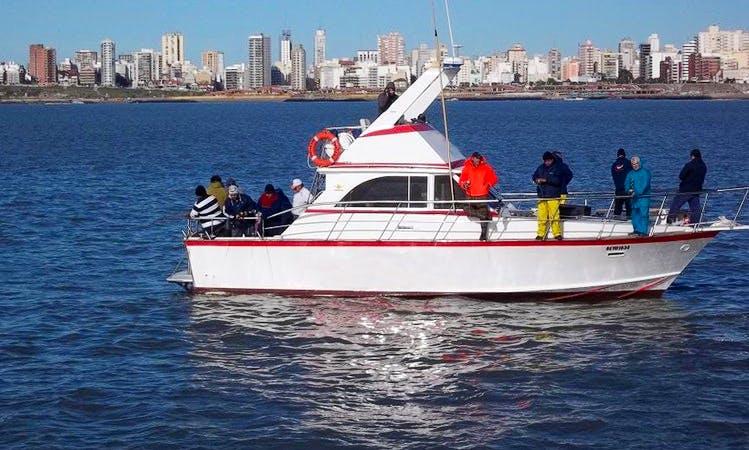 Sport Fisherman Fishing Charter in Mar del Plata, Argentina