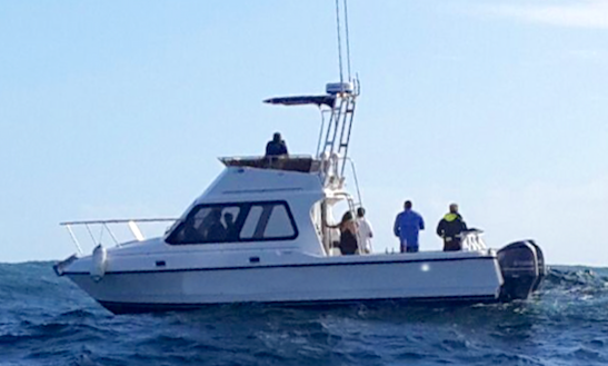 Enjoy Fishing In Cape Town, South Africa On 32' Chrissie Sport Fisherman