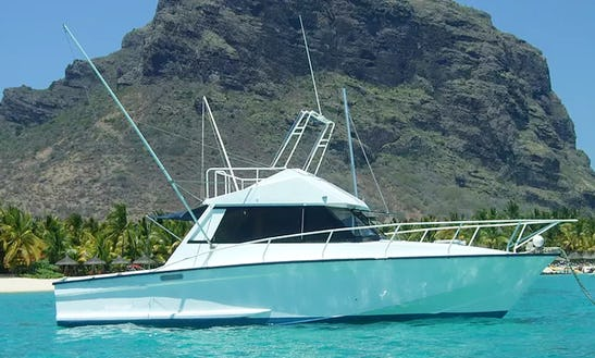 Enjoy Fishing In Le Morne, Mauritius On Sport Fisherman