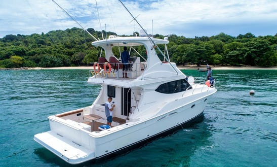 Sport-fishing Yacht Silverton 50' Convertible In Phuket