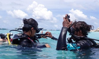 Enjoy Diving Trips and Lessons in Malé, Maldives