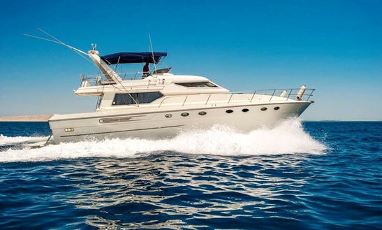 Cruise/snorkel The Red Sea In Luxury