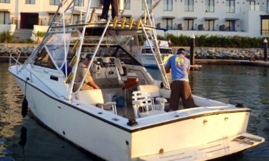 Enjoy Fishing In Cabo San Lucas, Mexico On 29' Dona Meche Cuddy Cabin