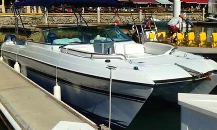 20' Power Catamaran