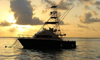 Fishing Adventure for 4 People with a Friendly crew in Malindi, Kenya