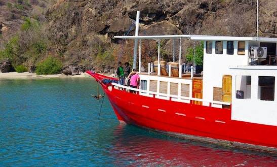 Unforgettable Dive Safari Trips In Komodo, Indonesia