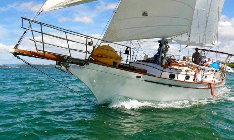 "Charter ""Vigilant"" Sailboat in the Bay of Islands, New Zealand"