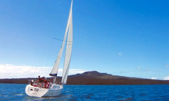 Sailing Courses In Auckland, New Zealand