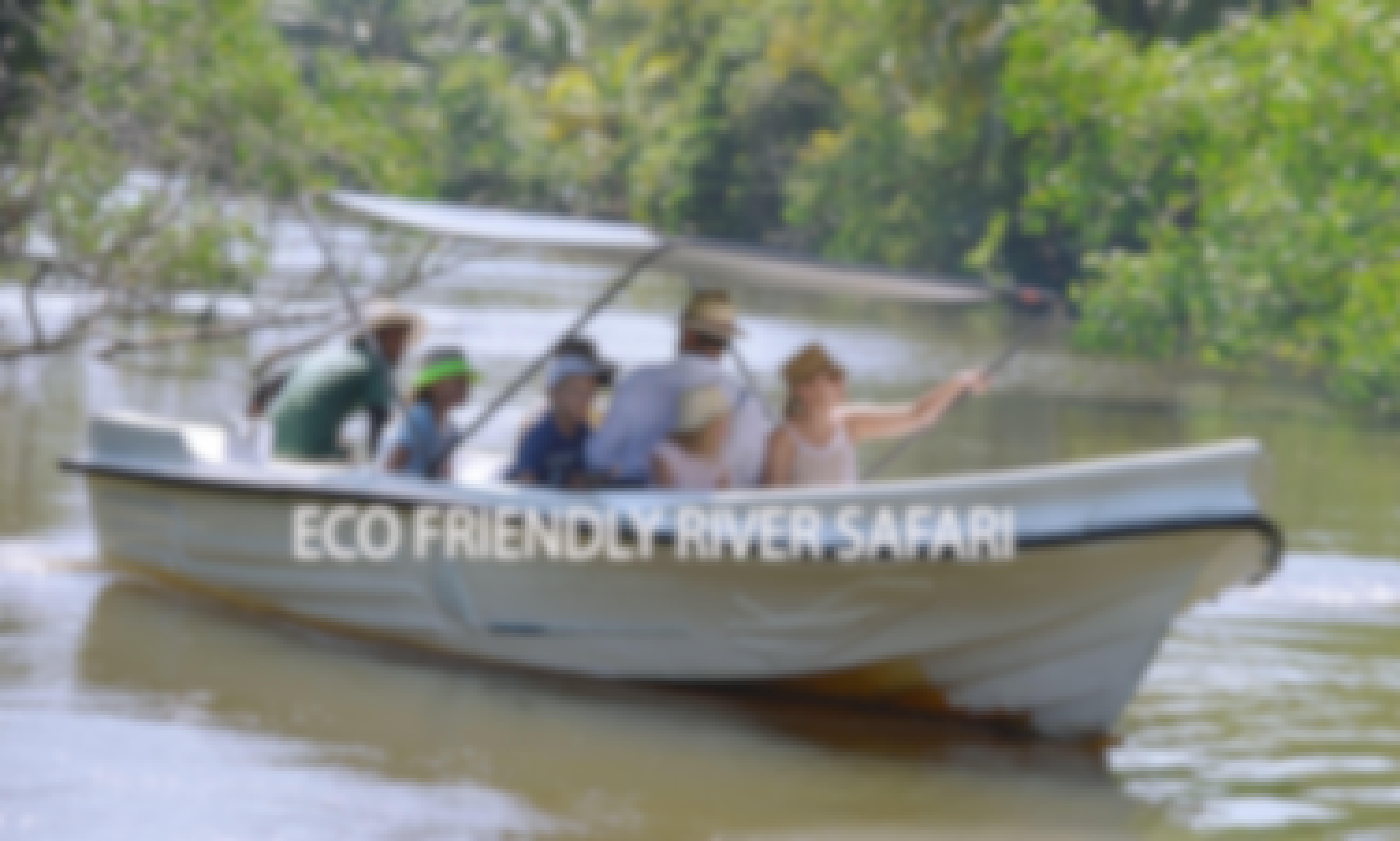 Eco River Safari in Galle