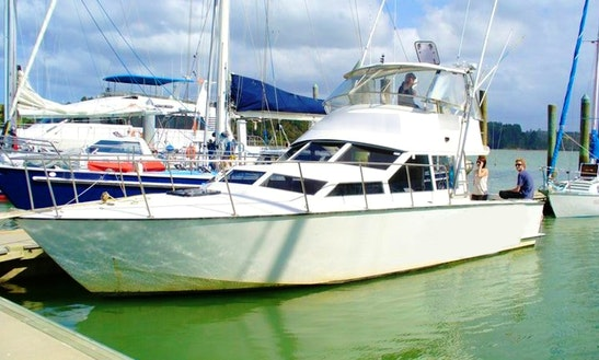 Enjoy 36' Sport Fisherman Charter In Paihia, Northland
