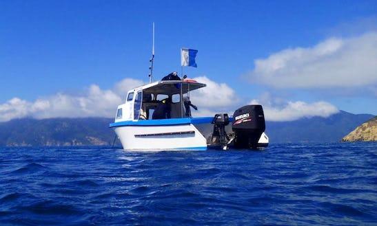 Diving Trips In Waikawa, New Zealand